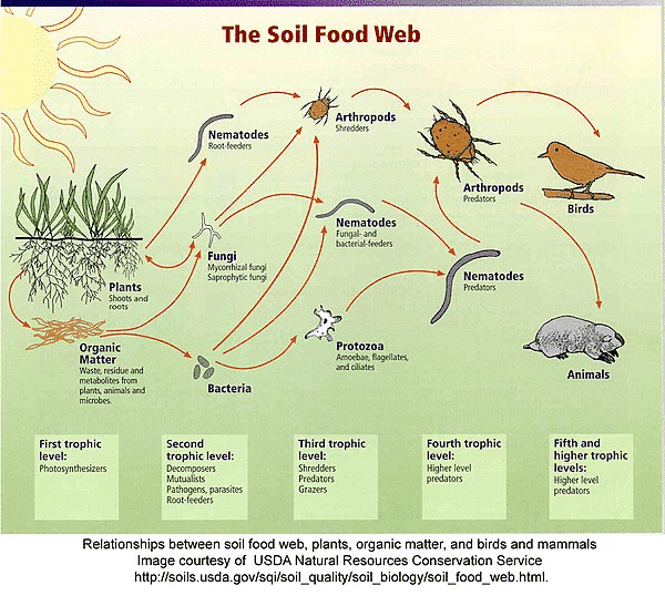 Farming connections