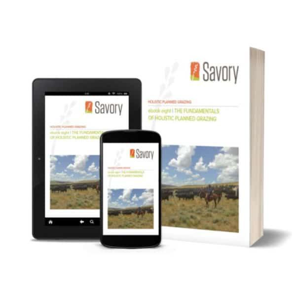 Holistic Grazing E-Book Bundle