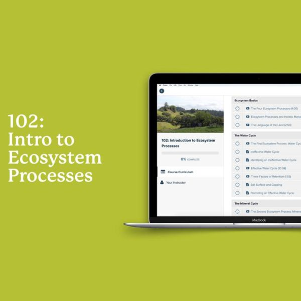 INTRODUCTION TO ECOSYSTEM PROCESSES