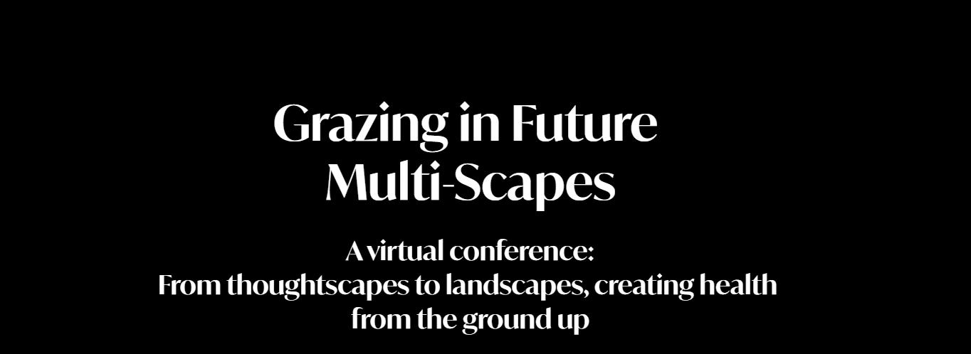 Multi-scapes