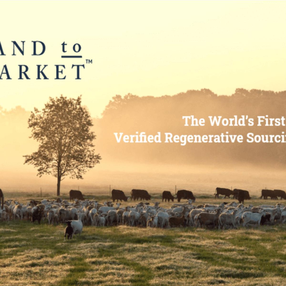 Land to Market New Zealand