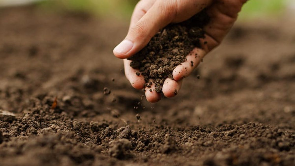 Ecological Outcome Verification Monitor